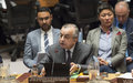 "SRSG Tanin at UN Security Council Session on Kosovo: ""There Is No Alternative to Dialogue"""